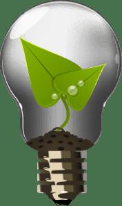 big-bulb-icon